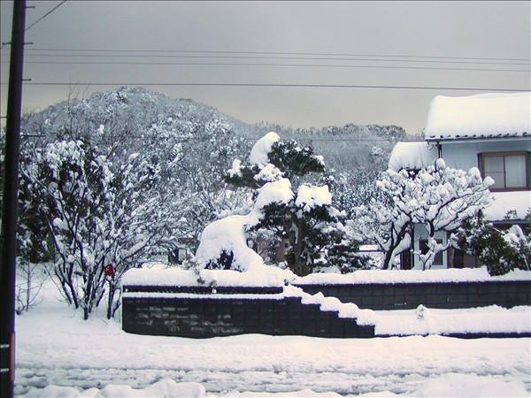2008年元旦の雪の様子~道路も雪が多いです