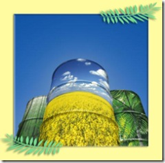 biodiesel_1