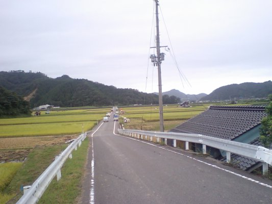 稲刈り中の田