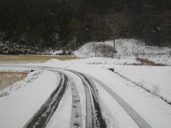 タイヤの跡が少ない雪道